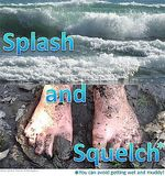 Science Festival event - Splash and Squelch
