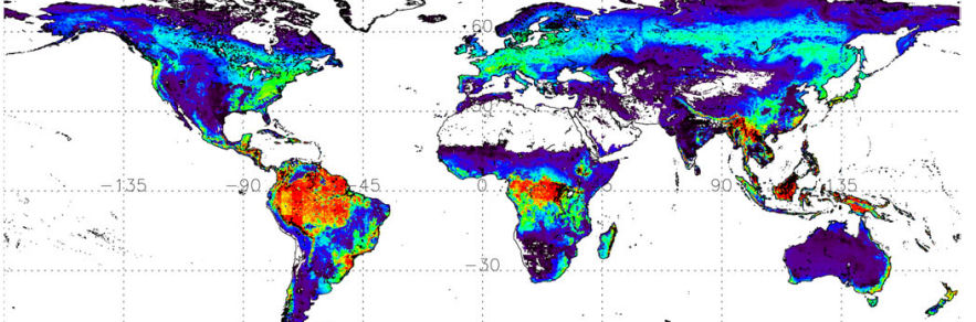 Department of Geography, Cambridge » The Cambridge contribution to ...